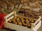 Полезные советы по хранению картофеля на балконе или в погребе