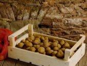 На фото как хранить картофель
