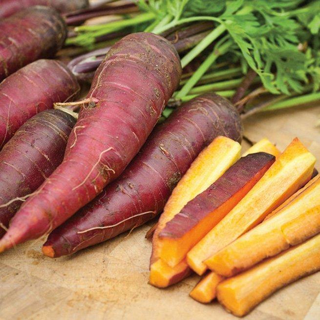 На фото разноцветная морковь