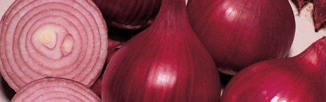 Какие витамины содержит лук, и в чем его польза для организма