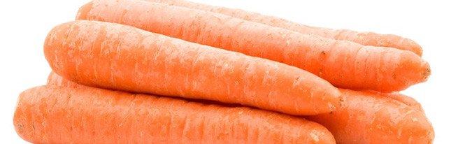 Вредители, грызущие морковь, и распространенные болезни морковки – как с ними справиться