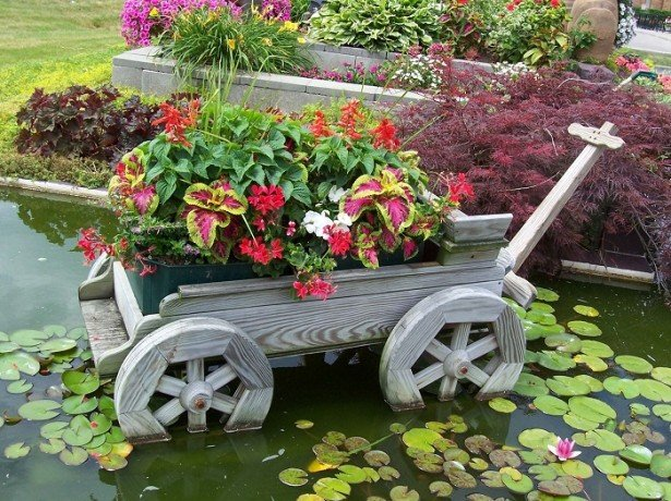 Самоделки для сада и огорода своими руками видео