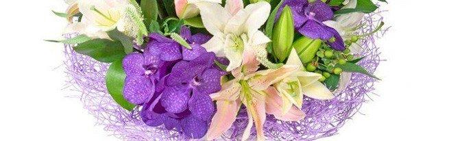 От золотой до фиолетовой – каких расцветок бывают лилии