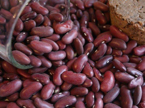 Чем полезна фасоль зерновая: красная и белая