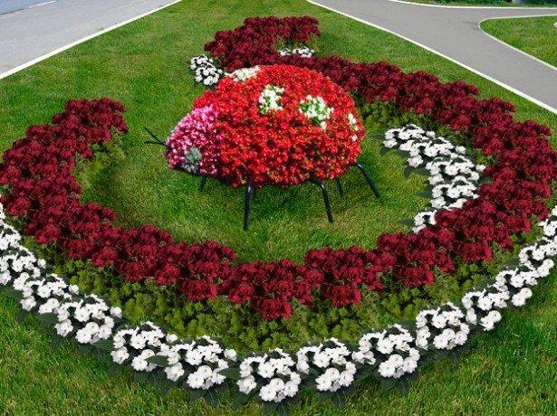 Как добиться красивой посадки цветов