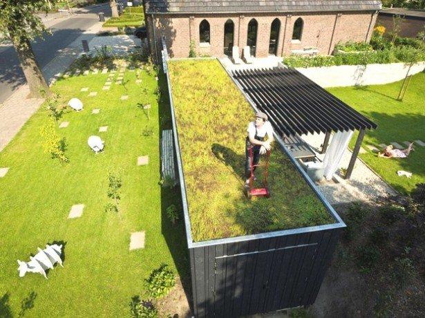 Фото крыши с газоном