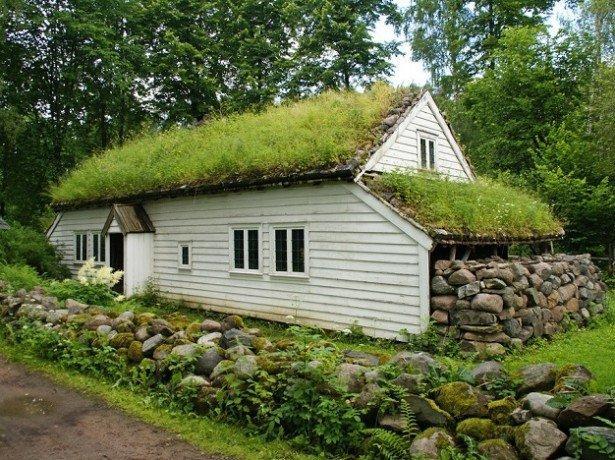 Фото дома с газоном на крыше