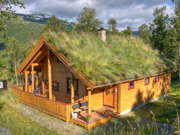 Фото газона на крыше