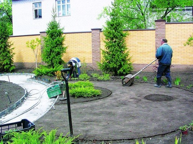 Планировка газона фото