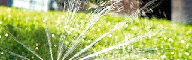 Подготовка участка под газон - от расчистки территории до перекапывания почвы и выравнивания