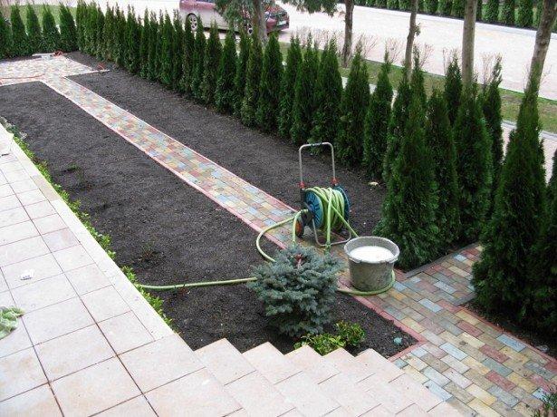 Подготовка земли под газон своими руками