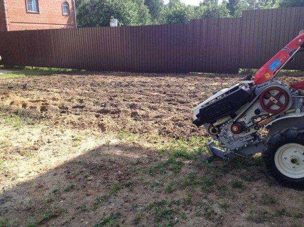 Как подготовить почву под газон самостоятельно? фото