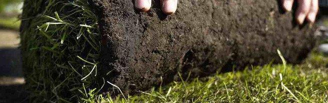 Газон в рулонах и искусственная трава – укладка газона по технологии