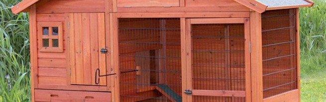 Клетки, вольеры или ямы - как лучше содержать кроликов?
