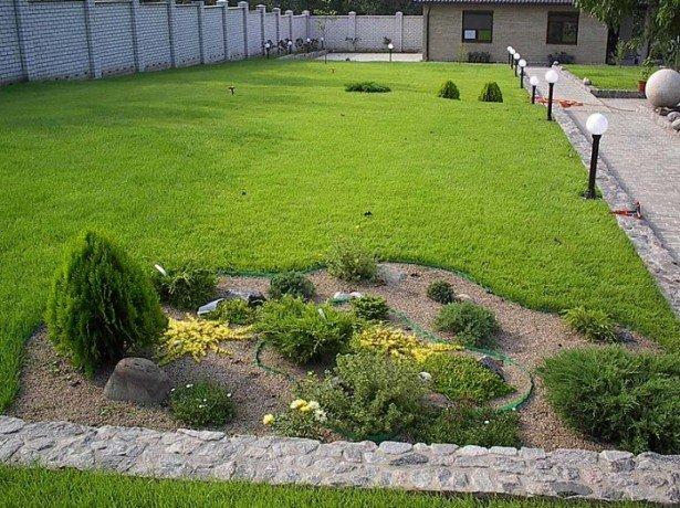 Картинки по запросу Самый лучший газон - рулонный