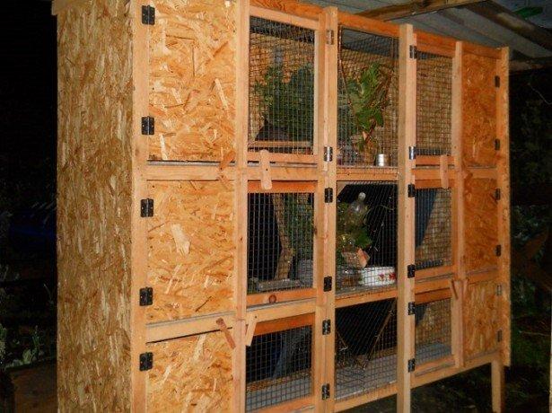Клетка для кролика своими руками схема золотухина - Utnetwork.ru