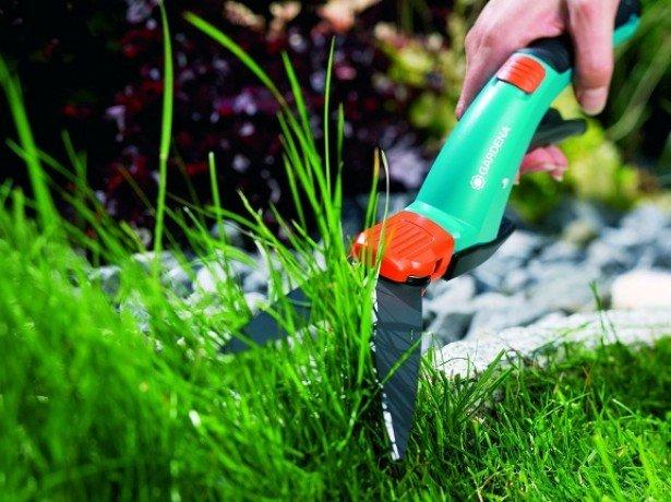 На фото ножницы для стрижки газона