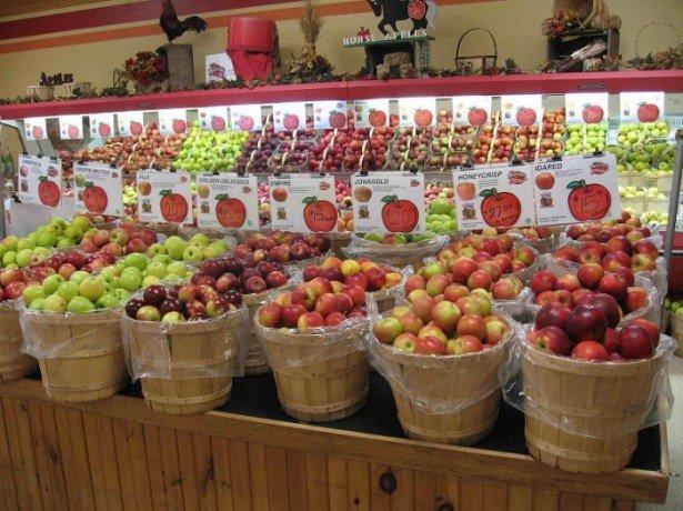 На фото яблоки