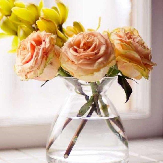 Вянут розы в вазе что делать