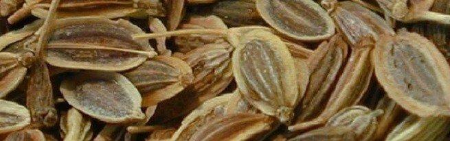 Чем полезны семена укропа для здоровья, и как их можно применять?
