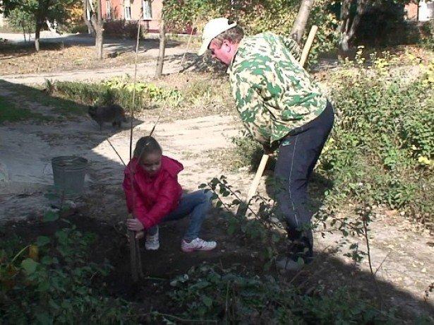 как сажать вишню весной пошаговая инструкция - фото 7