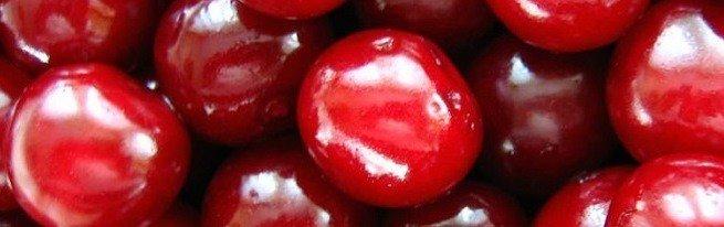 Пересадка вишни осенью – насколько оправдана, и как ее правильно провести