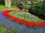 Тюльпаны в дизайне сада – как красиво посадить эти весенние цветы в саду