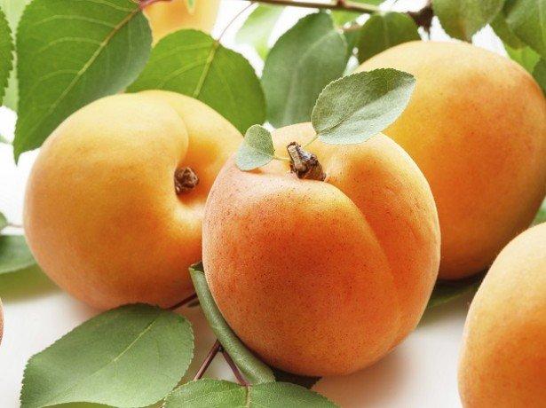 Чем полезен абрикос для здоровья?