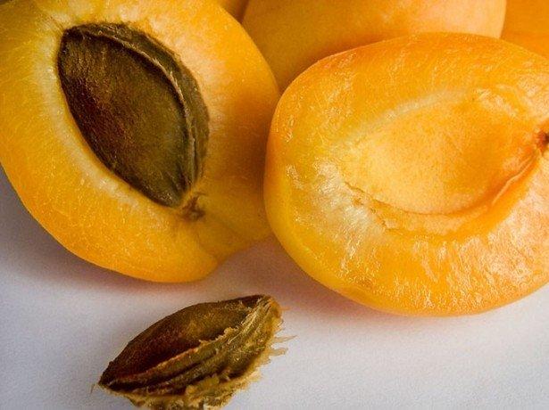 Выбираем абрикосы на курагу фото