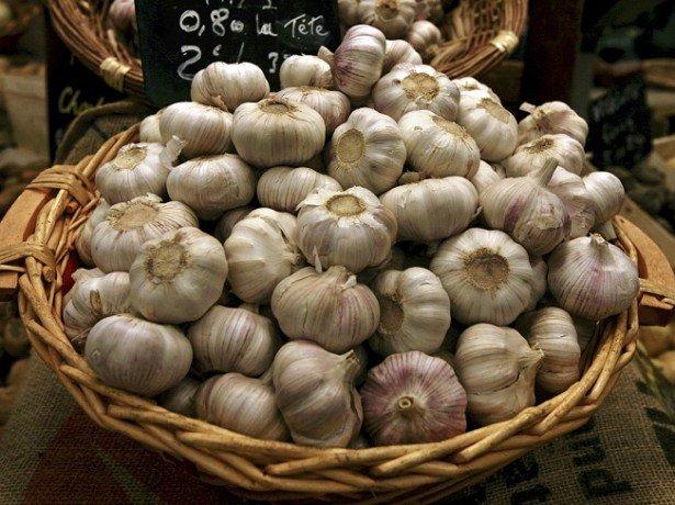 Чеснок - польза и вред для организма в проверенных народных рецептах