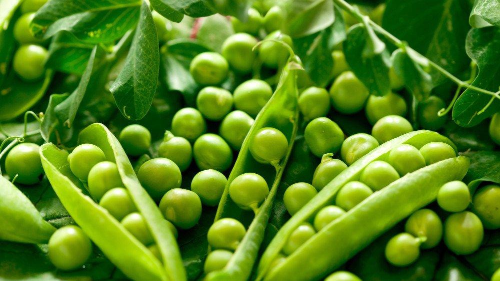 горох зеленый свежий калорийность