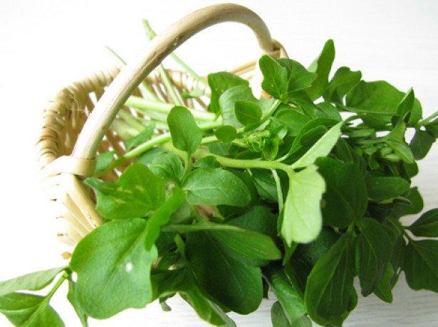 Как покупать и хранить салат для использования