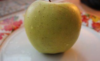 Яблоня Кальвиль снежный – манящий аромат лета в декабре