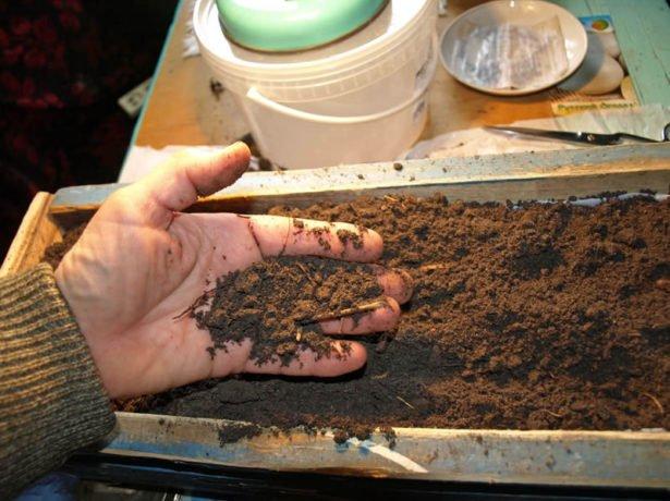 смесь песка и торфа