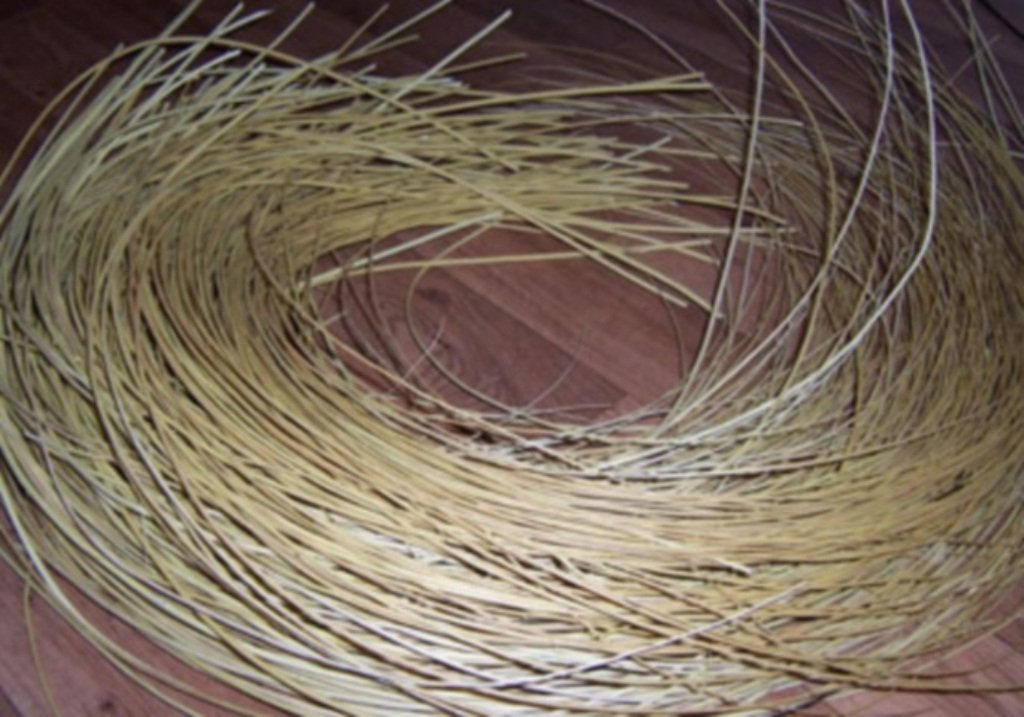 Как заготавливать ивовые пруты для плетения