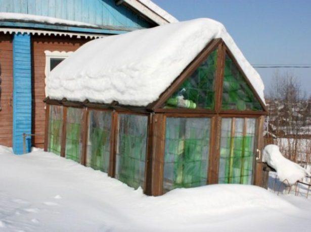 Теплица из пластиковых бутылок зимой