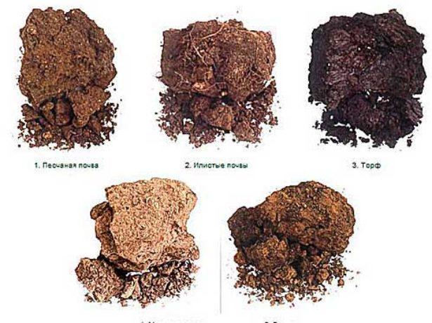 Типы грунта