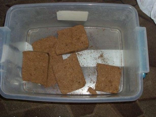 Кокосовые брикеты в ёмкости