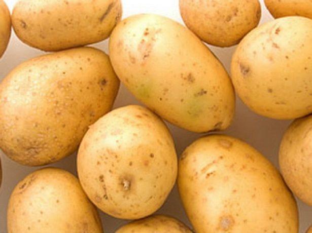 Сорт картофеля Ривьера описание с фото