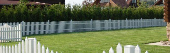 Какой забор для дачи и загородного дома лучше: виды, преимущества и недостатки, из чего сделать