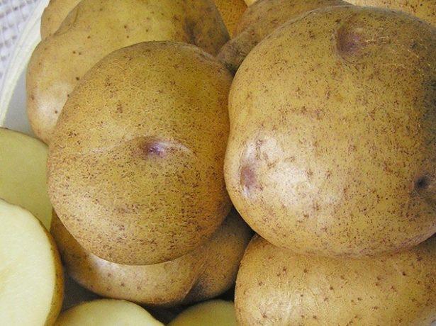 Картофель Синеглазка в разрезе