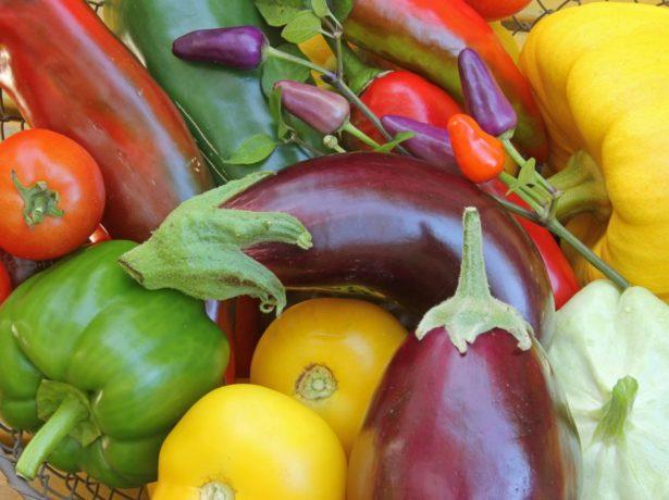 Овощи семейства паслёновых