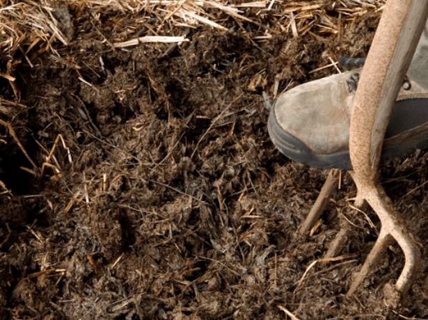 Перекопка земли с органикой