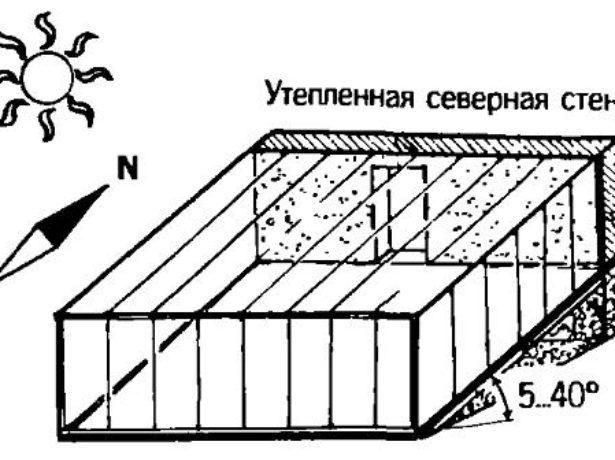 Схема расположения вегетария