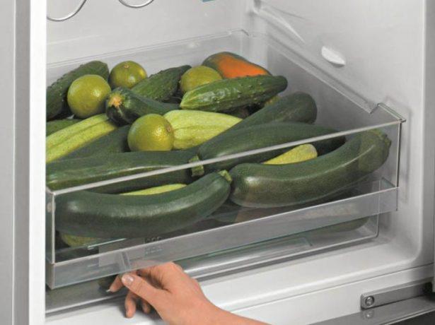 Хранение кабачков в холодильнике