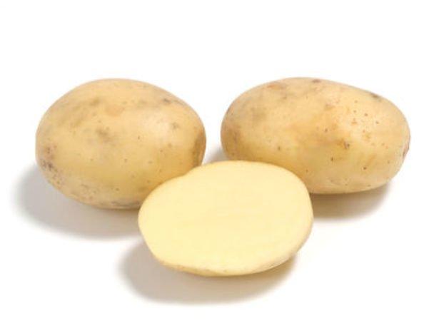 Картофель Коломба