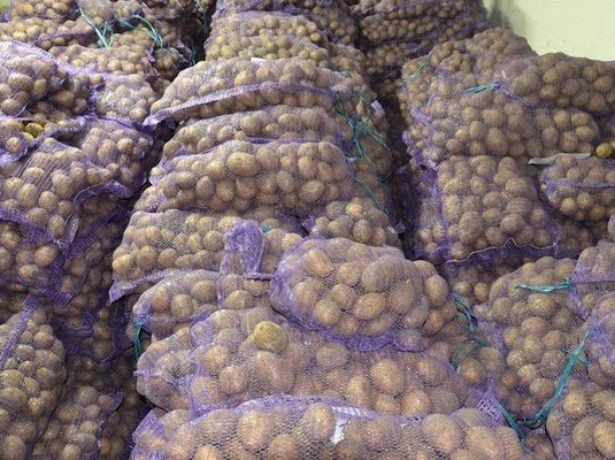 Картофель в сетках