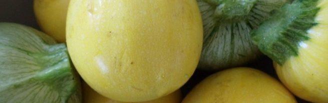 Удивительные круглые кабачки: сорта и советы
