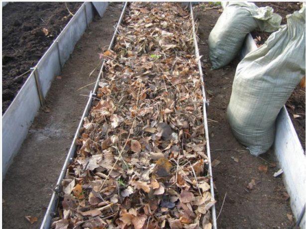 Устройство грядок с биоразлагаемой органикой