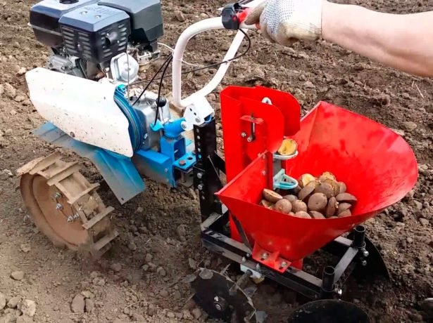 Посадка картофеля с помощью мотоблока